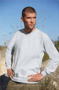 Alexander Windows Raglan Sweatshirt [Printed] - Heather Grey